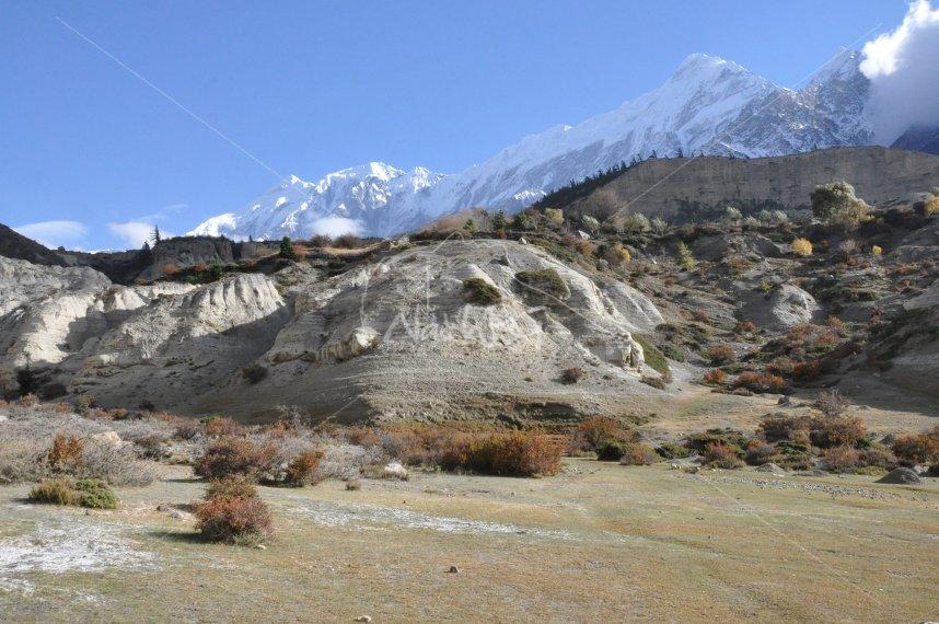 Népal, 2010